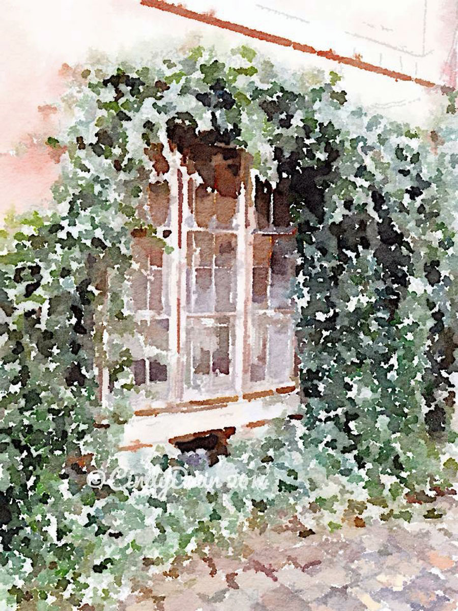 Prague-Window by Cindy Dean